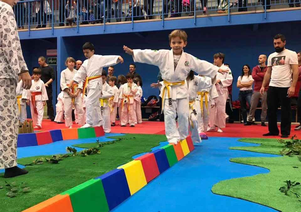 judolandia 2018